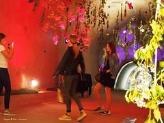 underground-tunnel-floraart_20