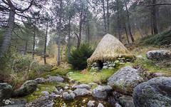 Entre el bosque (R'Lay) Tags: choza bosque naturaleza refugio poblado piedras pinos chozo