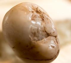 Old Man of the Pebble (MichikoSonja) Tags: macromonday pebble man pareidolia