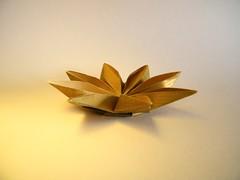 Waterlily (side view) - Meenakshi Mukerji (Rui.Roda) Tags: origami papiroflexia papierfalten flor fleur flower waterlily meenakshi mukerji