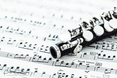 Woodwind Musical Instrument Closeup - The Keys Of A Piccolo (Peter Greenway) Tags: musicalinstruments flickr flute petergreenway windinstrument woodwind piccolo bcb instrument