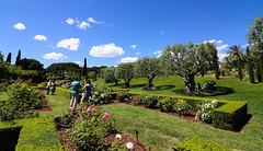 Maig_0329 (Joanbrebo) Tags: park parque parc parccervantes jardí jardín garden clouds nubes nuvols barcelona canoneos80d eosd autofocus efs1018mmf4556isstm saariysqualitypictures