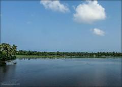 The beautiful waterlogged Paddy Fields.. (Gautham Karthik) Tags: india kerala alappuzha kuttanad incredibleindia paddyfields backwaters landscape beautifulscenery godsowncountry trainjourney