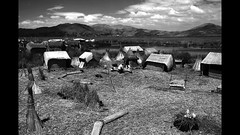 Leonard_Rachita_Urosa_Titicaca_Lake_Puno_Peru_2010 (Leonard Rachita) Tags: leonardrachita urosislands uros titicaca puno peru totora jonc floatingislands fleets