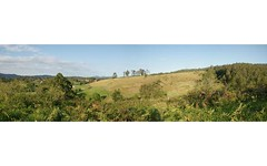 Lot 21 Lower Buckrabendinni Road, Argents Hill NSW