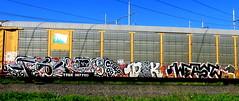 twito - DCK - weast (timetomakethepasta) Tags: twito upsg dck weast saroe freight train graffiti art autorack ttgx benching selkirk new york photography velcro