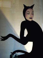 ... Y mientras tanto, en el misterioso cubil de Catwoman ... (Lanpernas 3.0) Tags: ladrona comic superhéroes gatubela catwoman meaow selinakyle escaparate gothamcity