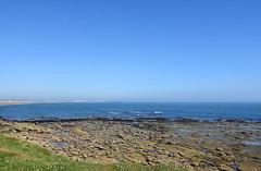 Looking north from Rocky Island (DavidWF2009) Tags: rockyisland seatonsluice northumberland sea