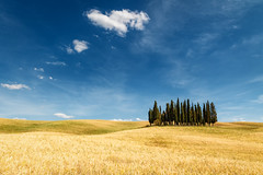 Tuscany (Petra Runge) Tags: feld himmel landschaft getreide toskana zypressen natur italien tuscany italy sommer summer cypress landscape nature sky field toscana sanquiricodorcia val dorcia canon 760d unescoworldheritagesite valdorcia