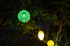 Green on green // Hoi An