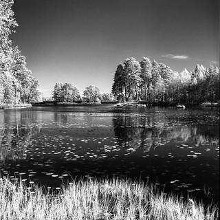 Orranäsasjön Infrarot Hasselblad