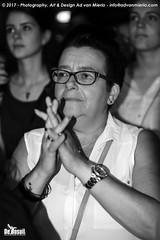 2017 Bosuil-Het publiek bij The Road Home en The Brandos 17-ZW