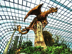 The Dragon Tree (Steve Taylor (Photography)) Tags: dragon animal art digital sculpture carving eerie frightening wood asia singapore tree plant lines flowerdome gardensbythebay