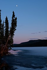 Looking South (MIKOFOX ⌘ Show Your EXIF!) Tags: canada mikofox bigfoxlake breakup yukon xt2 waterice spruce learnfromexif landscape provia hills may fujifilmxt2 spring showyourexif moon xf18135mmf3556rlmoiswr