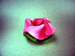 Rosa - Nilva Pillan (Rui.Roda) Tags: origami papiroflexia papierfalten flor fiore fleur flower rose rosa nilva pillan