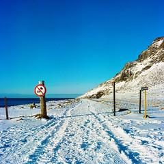 Snow beach - Unstad - lofoten islands- Norway (dufour_l) Tags: 2017 6x6 aprèsmidi hiver noritsukoki europe printemps qss3233 lofoten norway snow norvège neige 500cm kodakportra160 unstad beach winter