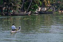 Backwaters, Cochin (Wanda Amos@Old Bar) Tags: india cochin backwaters water river boat boats rowing person
