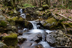 Chefna river (gillesfrancotte) Tags: 2017 amblève april ardennes avril aywaille bablette chefna d800 forêt nd nikon nikonpassion outdoor quarreux stoumont cascade creek eau fall forest landscape longexposure nature printemps river spring stream torrent tripod water watercourse waterfall waterscape wallonie belgique