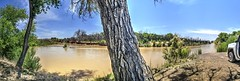 park site at Escondida NM (JoelDeluxe) Tags: riogrande mrg bosque water sediment river habitat restoration sites levees spring2017 flood nm newmexico joeldeluxe attributionusfws