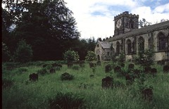 Harewood Church (P. Stubbs photo) Tags: foliage seeds leaf tree plant rootsshoots root shoot flower nature harewood harewoodhouse gardens scenes thedell himalayangarden stupa steppingstones thebothy harewoodcastle harewoodchurch icehouse