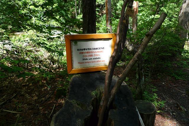 散策コースを行く人の為に 木の枝で作った杖が置かれています|赤沢森林資料館