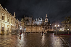 Noche lluviosa (Javier Martinez de la Ossa) Tags: andalucía archivodeindias catedraldesevilla españa giralda javiermartinezdelaossa lluvia nocturna patrimoniodelahumanidad plazadeltriunfo sevilla catedral