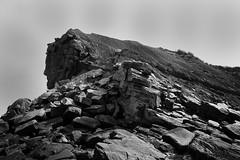 Joggins Fossil Cliffs (Carl RS) Tags: jogginsfossilcliff novascotia joggins fossil cliff nova scotia blackandwhite bw rock landslide quarry outdoor monochrome landscape sandstone granite efs18200mmf3556is canon 80d canon80d
