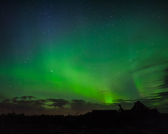 Nothern Lights (Kelly Gibbons) Tags: auoraborealis northernlights astrophotography nature alberta lloydminster canada gf1 20mm17 beautiful sky