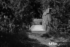 Bridge TAIR-11A @ f4 (Martin_Borgman) Tags: tair11a28135 tair11a handheld