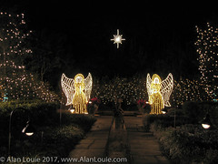 20031220 Bellingrath Xmas 0016 Angels.jpg (Alan Louie - www.alanlouie.com) Tags: bellingrath christmas alabama theodore unitedstates us