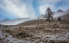 Standing in the Wind (Zano91) Tags: clouds sky grass panorama contrast rain nikon d7100 trees tree foreground background outdoor sigma art mountain mountains mount penice colorful vibrant cloud meteo landscape mood moody weather foothill hill mountainside 1835mm wind snow ski sun light windy solitude