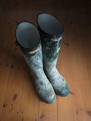 Cleaner required... (essex_mud_explorer) Tags: hunter green rubber wellington boots hunterboots rubberboots wellingtonboots wellingtons wellies rubberlaarzen gummistiefel gumboots rainboots madeinscotland muddy schlamm matsch mud muddywellies muddyboots