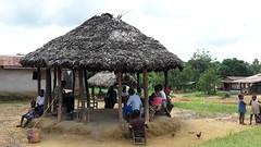 Palava Hut