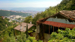 Above the city, Trieste (ScotchBroom) Tags: trieste fvg friuliveneziagiulia ivy overgrown view house
