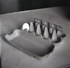 Single Egg (Vakkor's Photostream) Tags: film analog kodak tmax100 expired expiredfilm selfdeveloped rodinal kiev88 6x6 120film