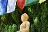 Buddha statue (ngawangchodron) Tags: sakya victoriabuddhistdharmasociety maplewoodroad victoria bc canada vancouverisland saanich taken9june2017