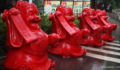 Happy Red Buddha Statues - Yangshuo Guangxi China (WanderingPJB) Tags: flickruploaded china guangxi yangshuo statues buddha happy smiling red accumulation smileonsaturday redrules cmwdred colourfulworld