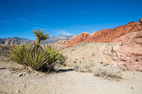 Nevada_BasvanOort-51