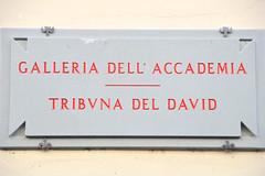 DSC_0672 (Seán Creamer) Tags: florence italy academyofflorence art david michelangelo renaissance prisoners saintmatthew pietà botticelli
