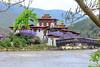 107A1368 (Tarun Chopra) Tags: jacarandatree bhutan photography canon5dsr 2017 gangsofduster ef24105mmf4lisusm