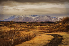 Path into the Mountains (williamwalton001) Tags: trees texture mountains moorlands colourimage clouds sky stone snow iceland goldcollection greenscene