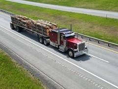 Peterbilt 389 (Northeast Truck Spotting) Tags: peterbilt 389 trucks flatbed