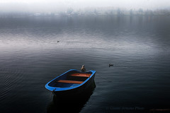 Nebbia su lago #Explore# (Gianni Armano) Tags: nebbia foto gianni armano photo flickr