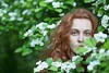 Young redhead girl outdoors (n_lev44) Tags: ifttt 500px leaves flowers portrait girl beauty spring nature fresh tree beautiful branch closeup natural seasonal woman adult style model green vivid serious young redhead long hair mysterious gorgeous artistic outdoors casual blossom attractive copy space