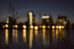 Rivage / Down by the river (Jacques Lebleu) Tags: rivièredesprairies bokehs nightfall nightlighting nightscene river weeds montréal ahuntsiccartierville
