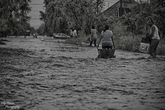 07.06.2017 Floods in Uljma In Serbia.  In which two people lost their lives, and i made a huge monetary damages. (Filip Dzever) Tags: streetphotography streetphoto flood uljma serbia ngc blackandwhite people disaster vojvodina floods catastrophe tragedy cataclysm nikonflicraward