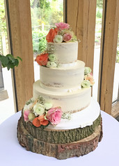 Rustic Flowers Semi Naked Wedding Cake