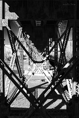x 2 (Janelle Tong) Tags: janelle tong photography tony ward studio individual project upenn penn park bridges railroad tracks underneath rust structure black white