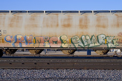 Remio Shark (Psychedelic Wardad) Tags: freight graffiti vts kts dna shark ibd thr remio