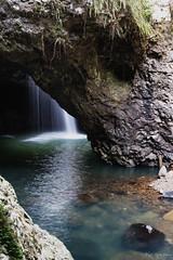 _DSC5628 copy (kaioyang) Tags: springbrooknationalpark springbrook naturalbridge gold coast hinterland waterfall cave hidden sony a7r2 contax zeiss 3570mm mt